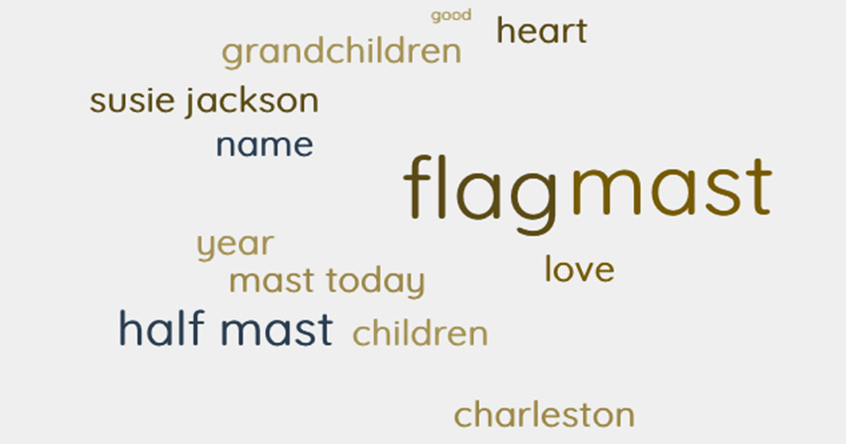 take down your flag lyric word cloud